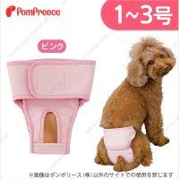 【ズバリ価格】 ベルト型サニタリーパンツ&洗えるオムツ 1〜3号