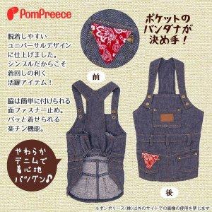 画像2: ジャンパースカート【2・3号】